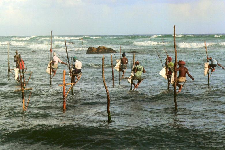 Sri Lanka | pescadores zancudos
