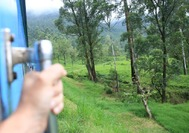 Tren de camino a Nuwara Eliya desde Kandy