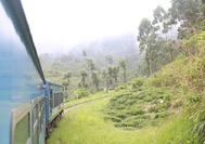 paisaje desde el tren camino a Nuwara Eliya